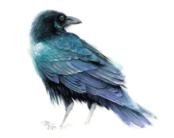 Raven Art Print - Watercolor Giclee Print. Raven Illustration, Crow, Raven. Small Gift Dorm Decor Wall
