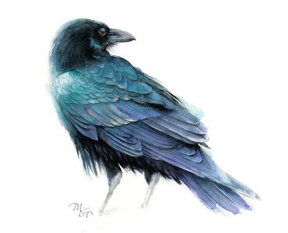 Raven Art Print Watercolor Giclee Print Raven Illustration