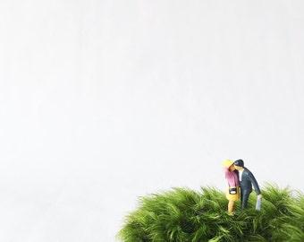 Kissing terrarium figurine // Terrarium Figurines // Moss Terrarium Figurine // Terrarium Accessory // Terrarium Miniatures
