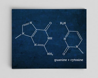 Chemistry PhD Science Gifts Ideas Science DNA Molecule Print Guanine Cytosine Science Teacher Gifts for Teachers Med School Graduation Gifts