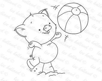 pig with beach ball
