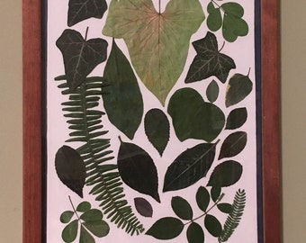 Modern Collection of Dried Leaves