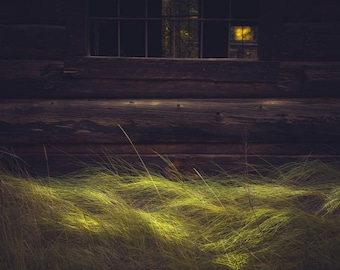 Fall grass, ghost town photo, Colorado art, fall art, log cabin, rustic western photo, Ashcroft, rustic home decor, log cabin decor | Waves