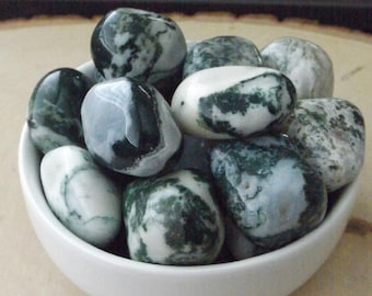 Tree Agate, 2 piece set, Tumbled crystal, Crystal healing, Mother Earth, Grounding stone, Crystal grid, Pocket stone