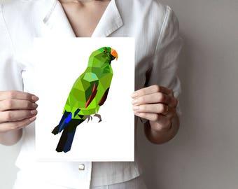 B92C - Eclectus parrot - Geometric bird art print, geometric poster, bird art, parrot, vivid green, wall art, wall decor, ...