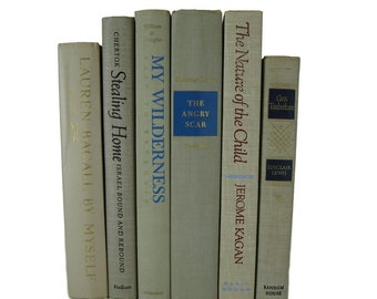 Decorative Hardcover Books,  Farmhouse Book Decor, Shades of  Tan  Taupe Vintage Decorative Books,