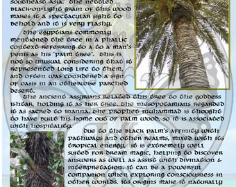BLaCK PALM MAGIC Properties, BoS Instant Download Page, WaND, Bark Scrolls, Book of Secrets, Glamerie Pages