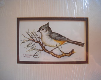 """Colorful Numbered and Signed 8"""" x 10"""" Nancy Shumaker Pallan  1980 """"TITMOUSE"""" Print 217/600 sealed in plastic!"""
