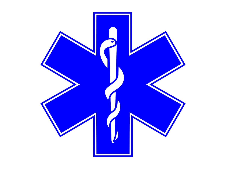 Rod of asclepius medical logo paramedics symbol outdoor vinyl description rod of asclepius medical logo paramedics symbol buycottarizona