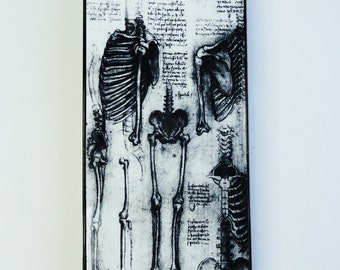 Iphone 7 plus 5 5s 4s 5c SG 5 skelleton anatomy Human black white  mobile cell phone cover snap case