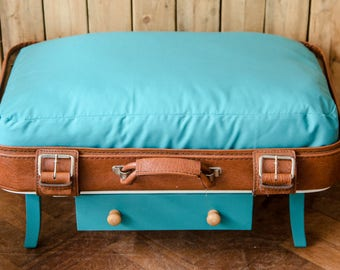 Pet Bed Suitcase  -  dog bed, cat bed, recycled, pet lover gift, raised pet bed