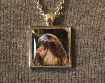"Red Tailed Hawk ""Ladyhawk"" Pendant Necklace"