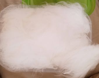 """raw 3"""" staple, clean Giant Angora rabbit wool, ready to card/dye and spin into some yummy yarn!!! sold by the oz."""