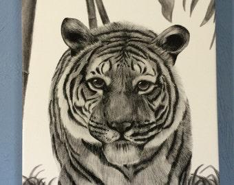 "Tiger with Matting 11""x14"""