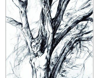 Dryad illustration / / fairy Drawing / / Graphite black and white / / Print size 15 x 9 inch