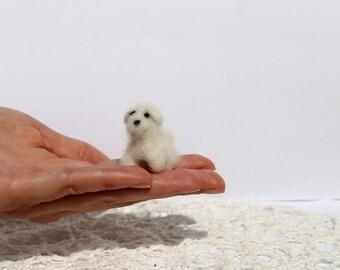 Bichon Frise  needle felted miniature dog, tiny puppy, doll house animal, tiny bichon frise