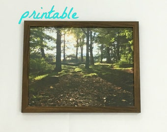 Digital Download Photography Forest Print Watercolor Art Woods Wall Art Landscape Photo Nature Print Printable Wall Art Instant