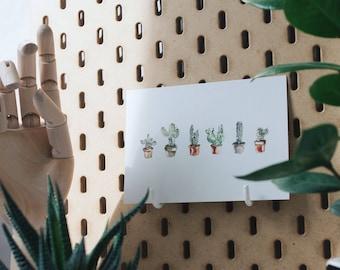 Postcard    Cactus Love