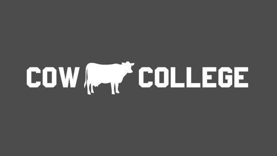 Cow college vinyl decal vinyl sticker