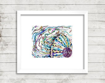Jellyfish Color Giclee Print