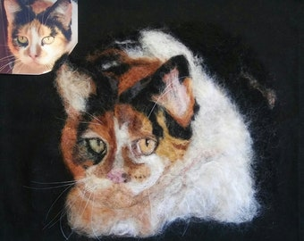 The little Calico Cat