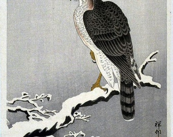 Christmas Cards Hawk on a snowy branch Koson Ohara Japanese woodblock print pack of five notecards