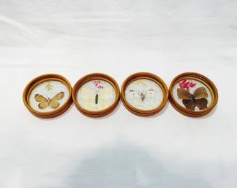 4 Vintage encased butterflies coasters, Butterfly coasters, Under plastic, Bamboo coasters
