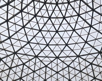 Mitchell Park Conservatory, The Domes, Milwaukee landmark, wall decor, office decor, black and white photograph