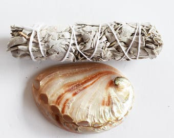 "Smudge Kit Polished Abalone Shell and 4"" White Sage Stick Positive Energy & Purification"