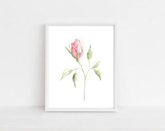 Rose, rose print, watercolor roses, watercolor rose, pink rose, watercolor painting, watercolor, watercolour, flower print, wall art, prints