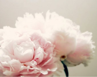 Peony print flower photography spring art nursery decor home decor wall art pink girl bedroom decor peony art pink floral art ZEPHYR