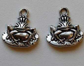 Frog on Lily Pad Charms (2)