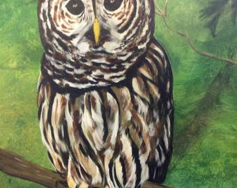 """Barred Owl, Acrylic Painting on 16"""" x 20"""" Canvas"""