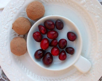 Dark Chocolate Cranberry Truffles (16 count)
