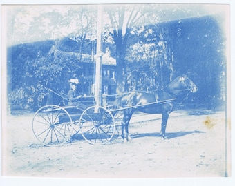 Antique Vintage Cyanotype Photograph Woman in Carriage Buggy Horse History