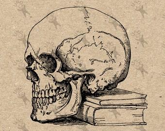 Vintage retro drawing Human Skull Anatomy Book image Instant Download Digital printable clipart graphic Burlap Transfer Iron On 300dpi