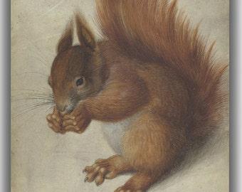 Hans Hofmann: Red Squirrel. Fine Art Canvas. (04098)