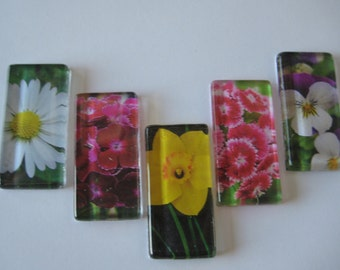Pretty Floral Glass Magnets Set of 5