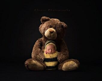 bear digital backdrop