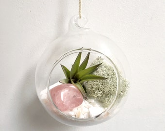 Valentines Day Rose Quartz Air Plant Garden Kit • love terrarium tillandsia birthstone crystal birthday personalize gift present airplant