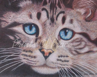 Cat-  portrait - prints -  11 x 14 - FREE SHIPPING this WEEK!
