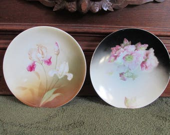 Antique Pair Small Floral Plates