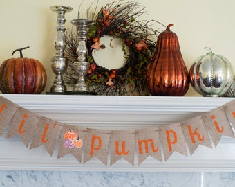 Little Pumpkin Banner, Lil' Pumpkin Banner, Pumpkin Baby Shower, Fall Baby Shower Decor, Pumpkin Baby Shower Decor, B077