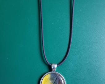 Blue and Gold Macaw Feather Necklace
