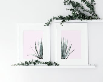Set of 2 Cactus Watercolour Prints, Botanical Leaf Print, Green Leaf Prints, Plants on Pink Print, Wall Art, Contemporary, Nature Print