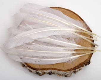 "Natural Goose Feathers 7"", White Goose feather, Craft feathers, Halloween feathers, Boho decor, Craft Supplies Unpainted natural feathers"