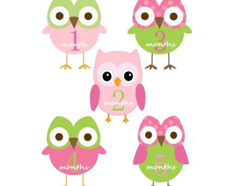 Baby  Monthly Iron On Heat Transfers - Pink OWLS - Plus Just Born  116