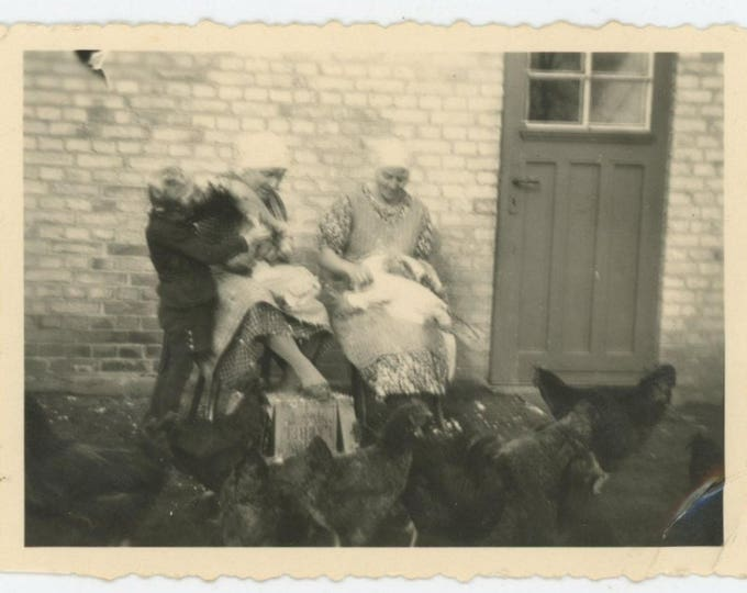 Vintage Snapshot Photo: Chicken Pluckers (712626)