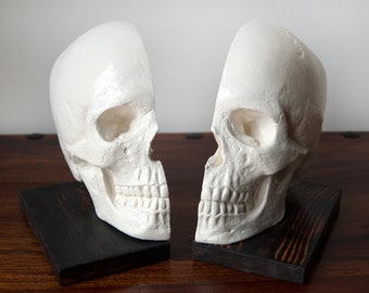 Bookends / Book ends / Skull Decor / Skull Ornament / Book Storage / Human Skull / Skull Bookends / Book Lover Gift