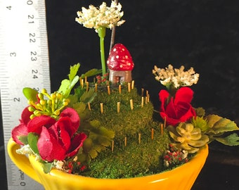 Spiral Stroll (Tea Cup Fairy Garden, Roses)